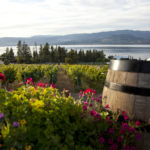Summerhill Pyramid Winery ©Canadian Tourism Commission